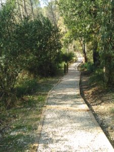 Uno dei sentieri da trekking