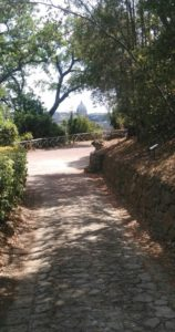 Passeggiata lungo i sentieri del Parco
